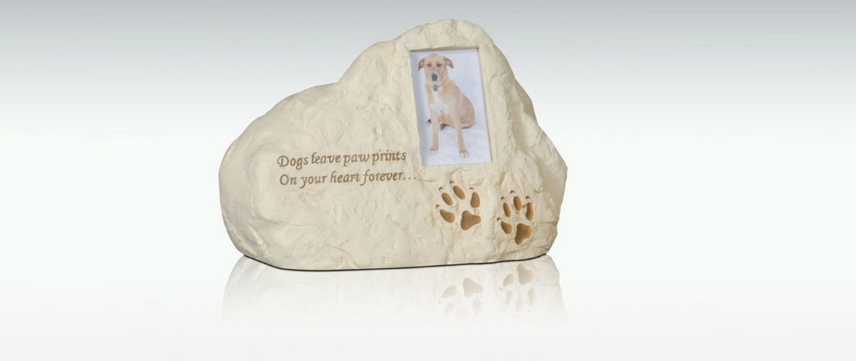 Dogs Leave Paw Prints